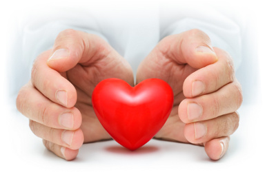 Hands Cupped Around Plastic Red Heart on White Background